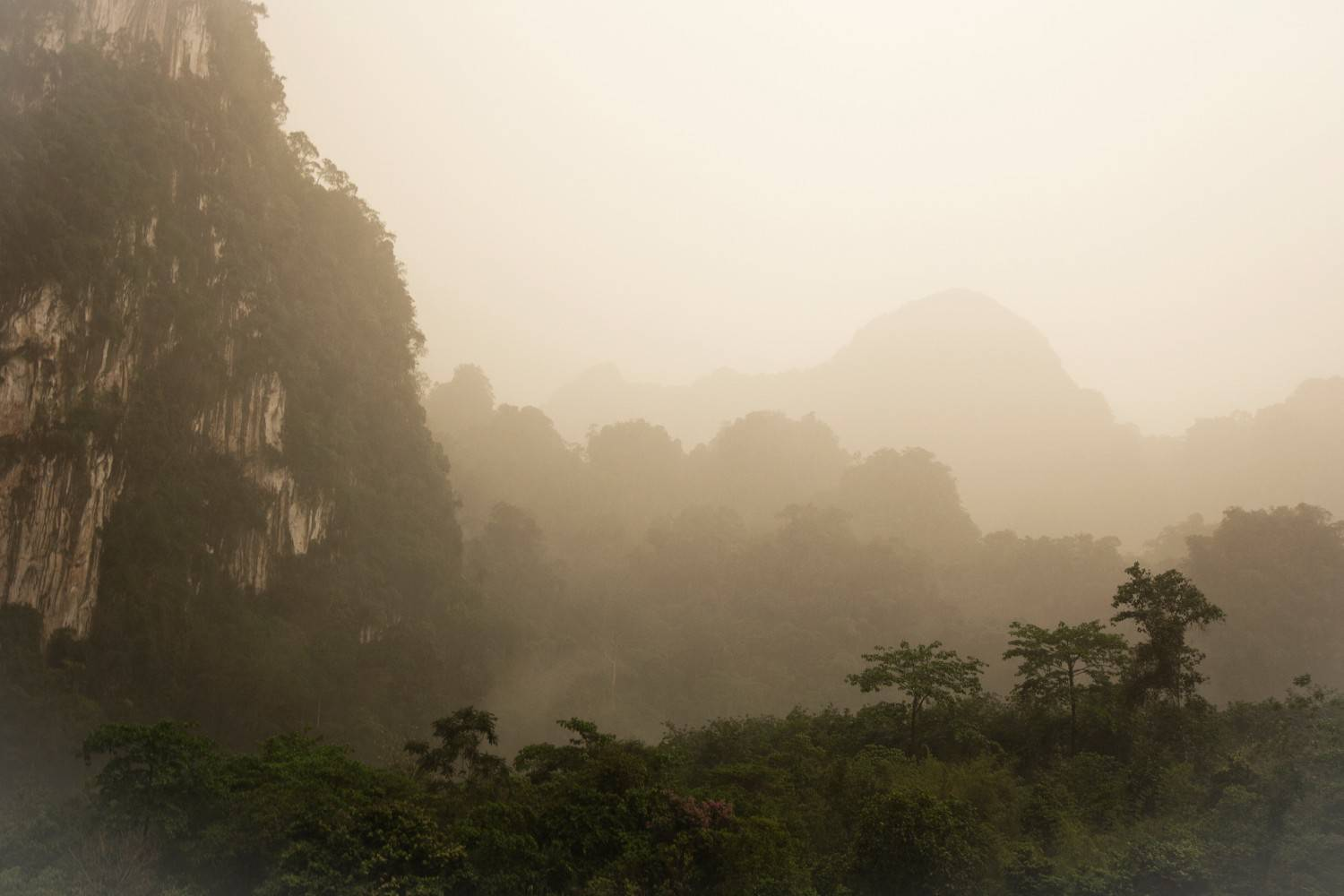 Mountains in the fog of Khao Sok National Park