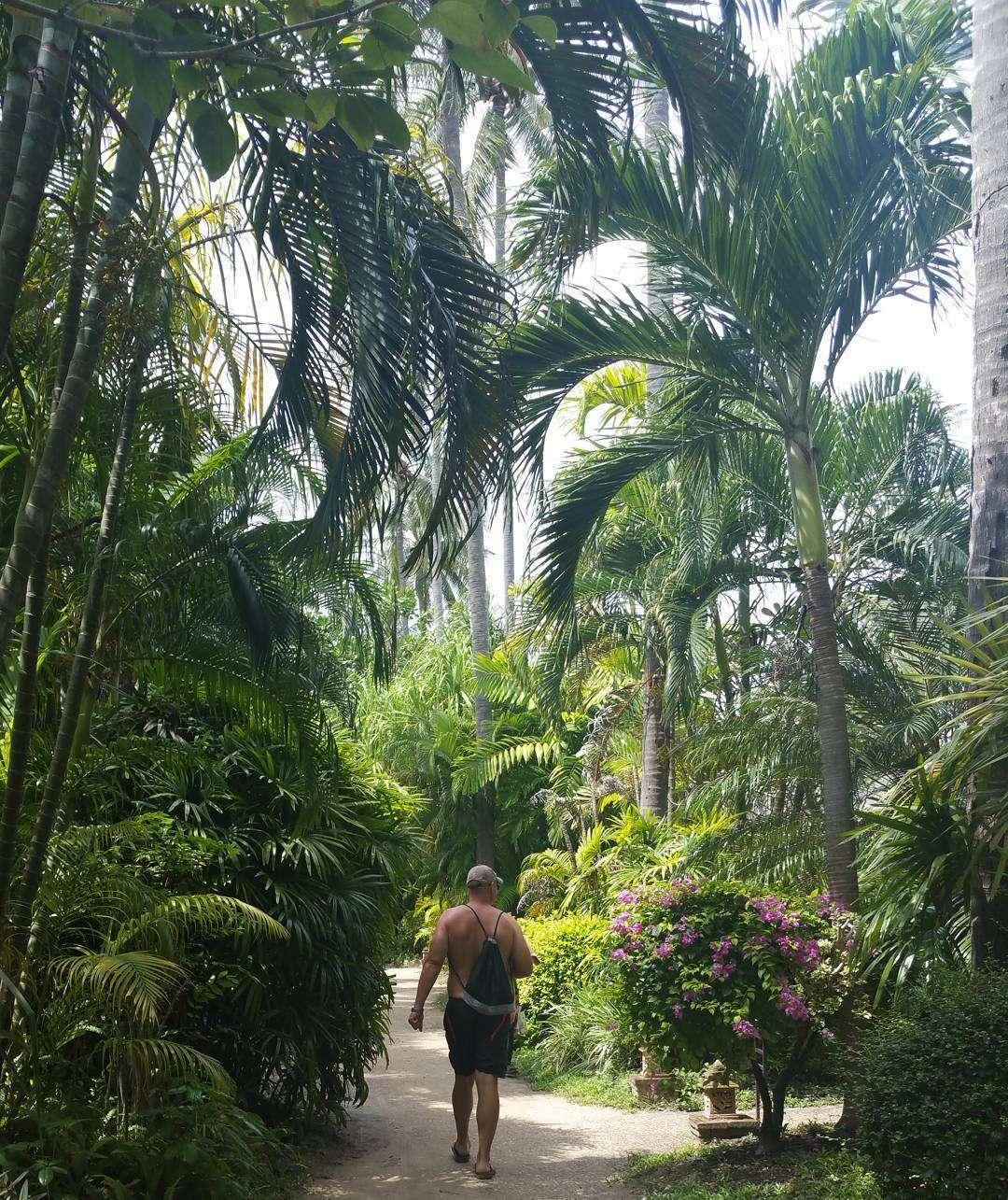 De mooie tuin van het Railay Village Resort