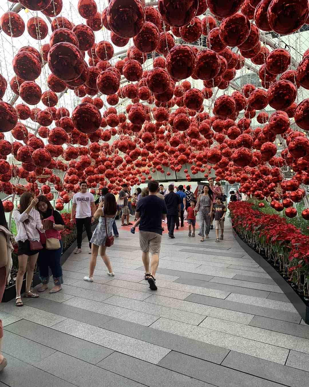 Haag met allemaal grote rode kertsballen