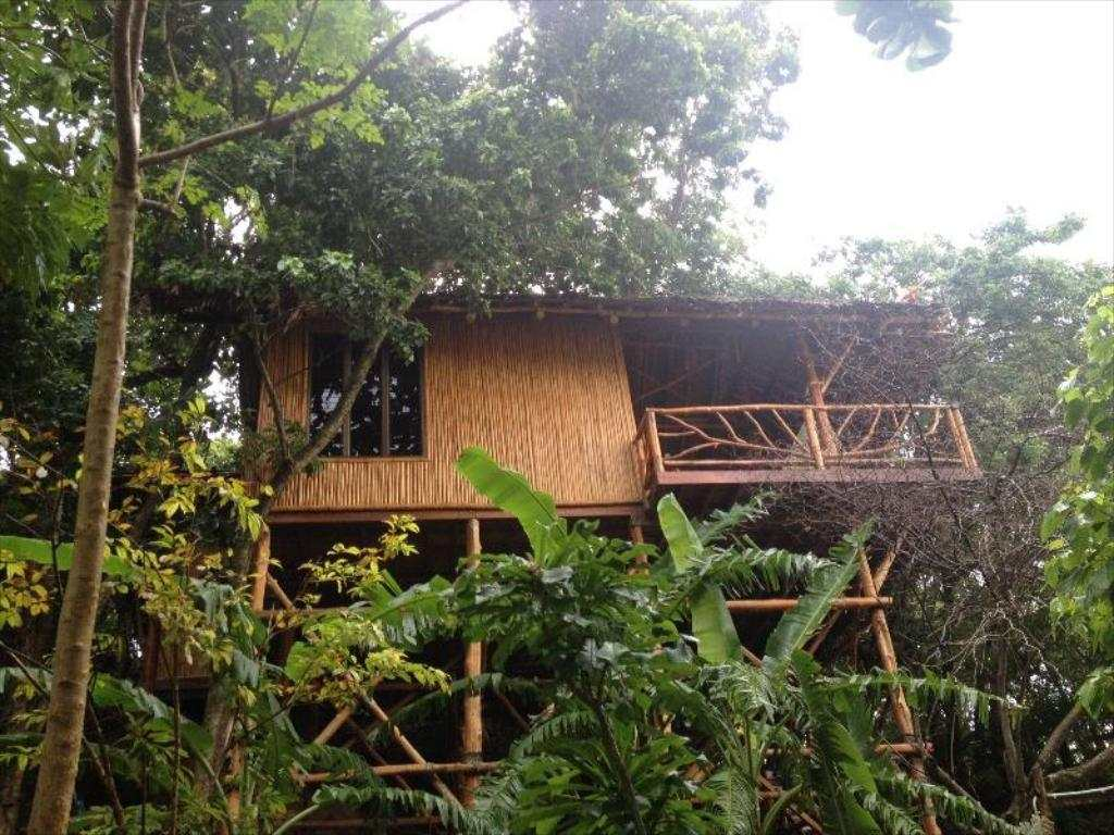 a bungalow of the Viking Nature Resort on Koh Phi Phi