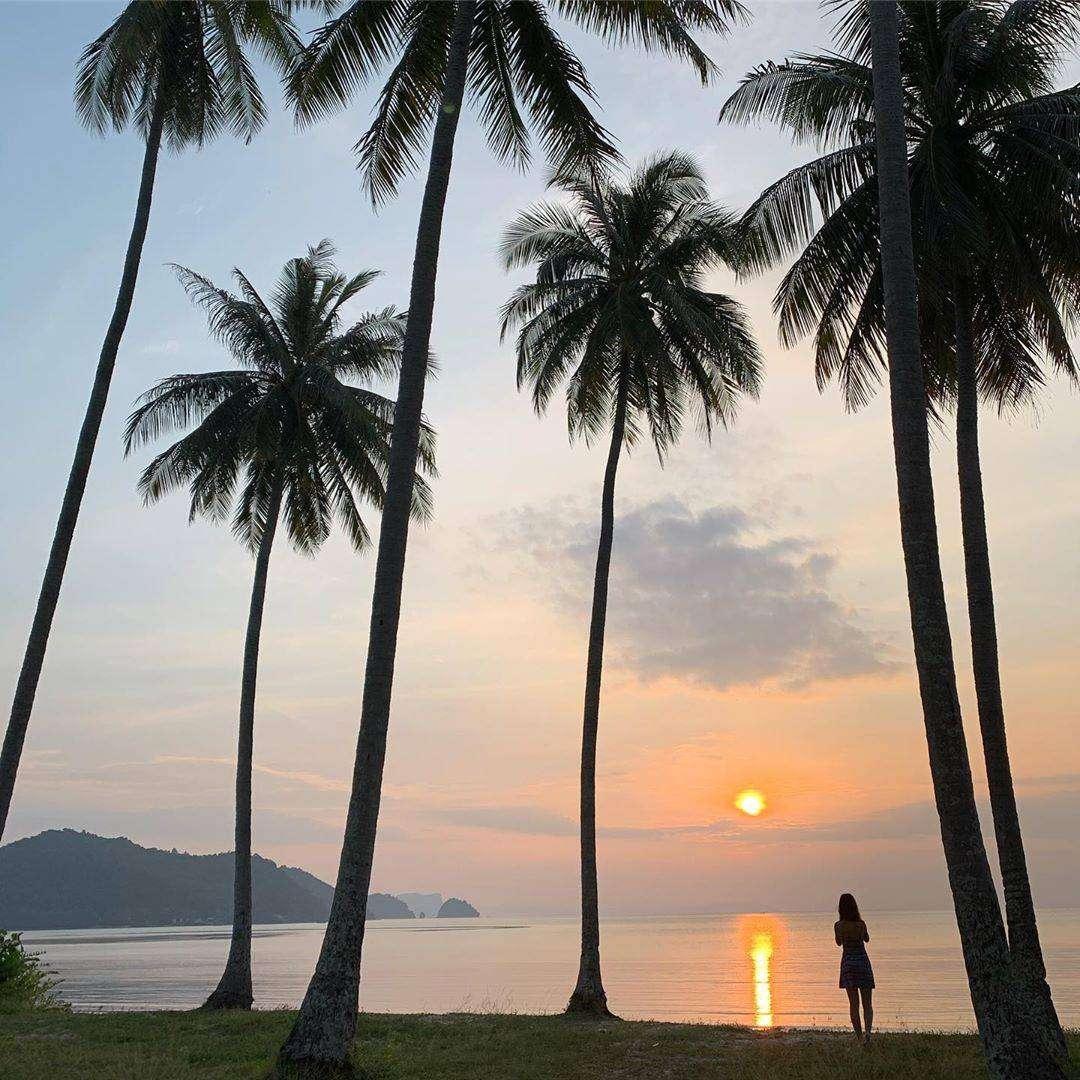 Sunset with palm beans on koh yao yai