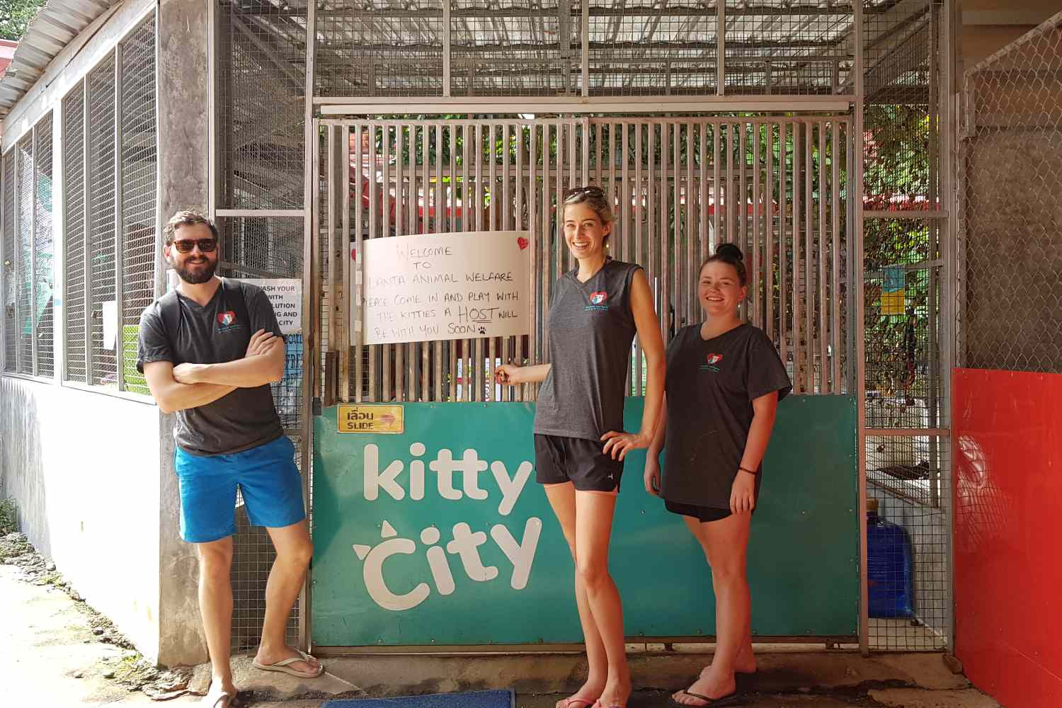 Animal Welfare, volunteers at the entrance to Kitty City