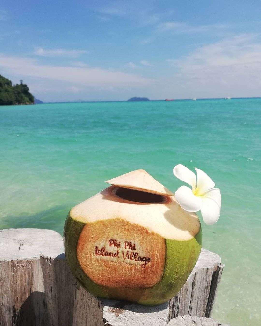 verse kokosnoot bij het Phi Phi Island Village Resort in Loh Ba Kao Bay (Koh Phi Phi, Thailand)