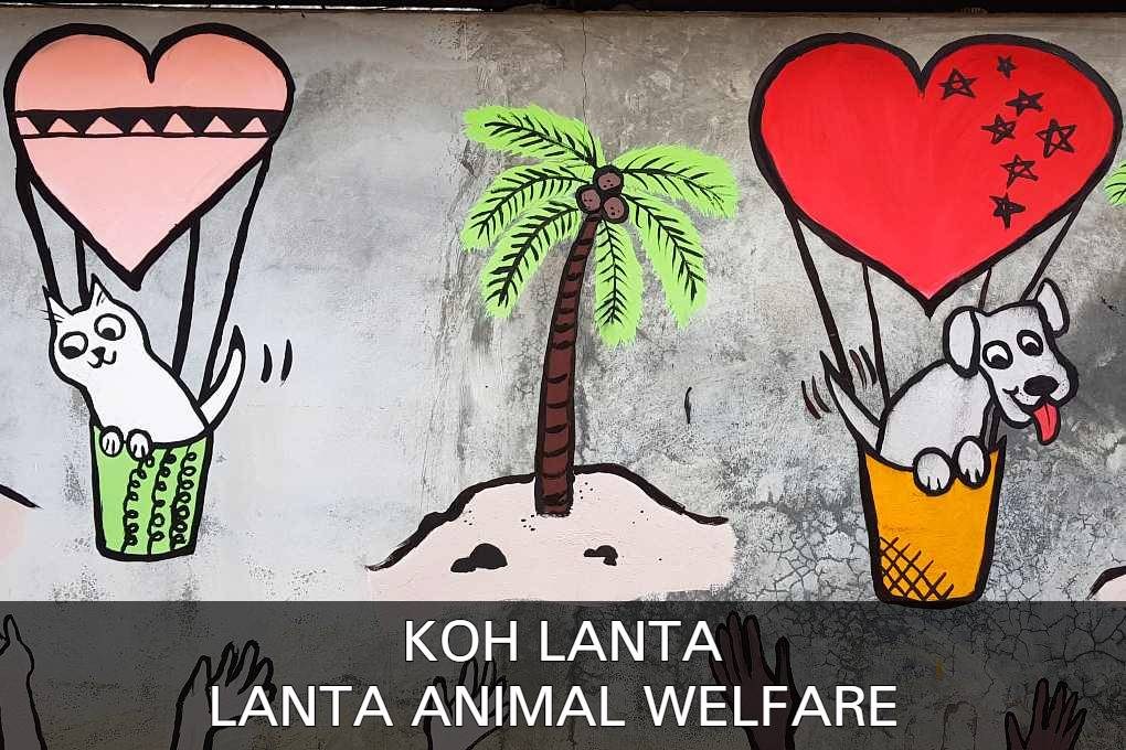 Read all about Lanta Animal Welfare on Koh Lanta in Thailand here.