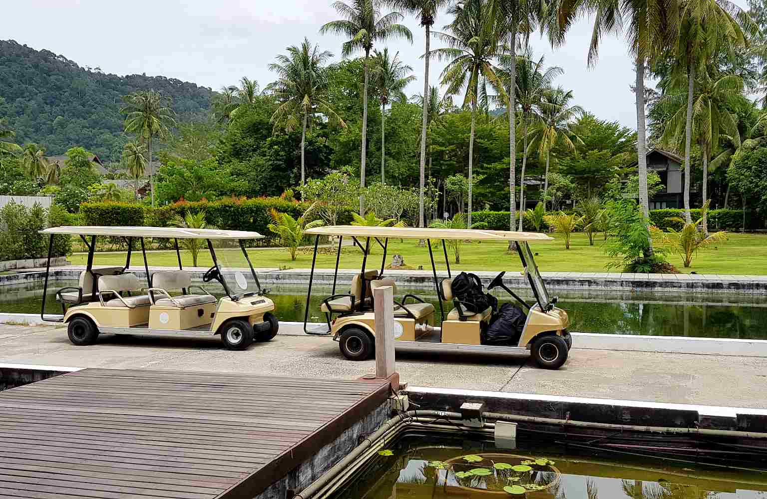 Twin Lotus, with golf carts to the rooms