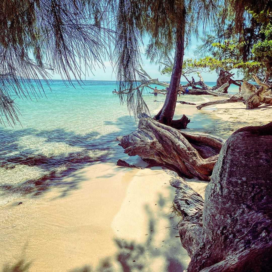 The beautiful nature on the beach of Koh Kradan