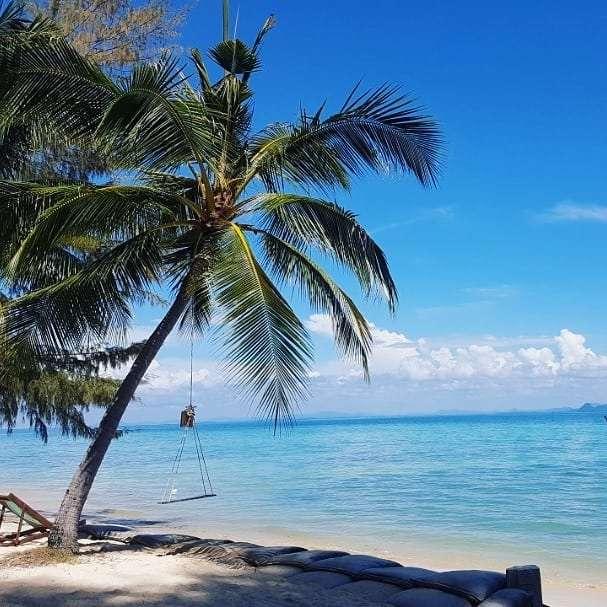 Palmboom met schommel op Koh Kradan