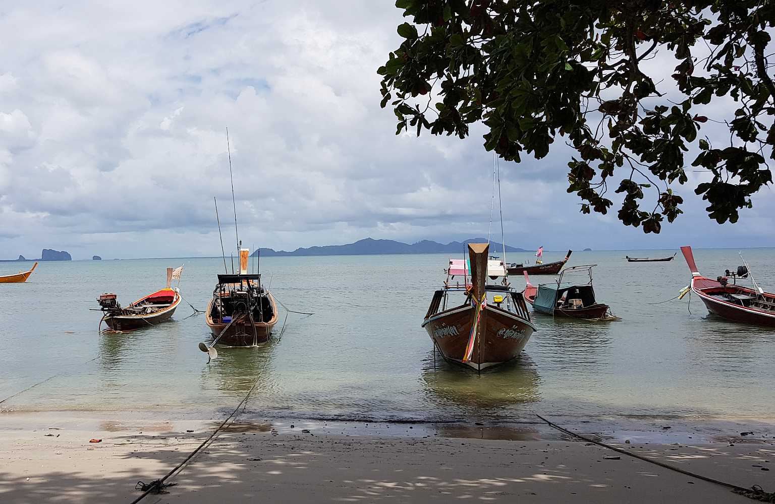 Longtail boats in sea off the coast of Koh Mook