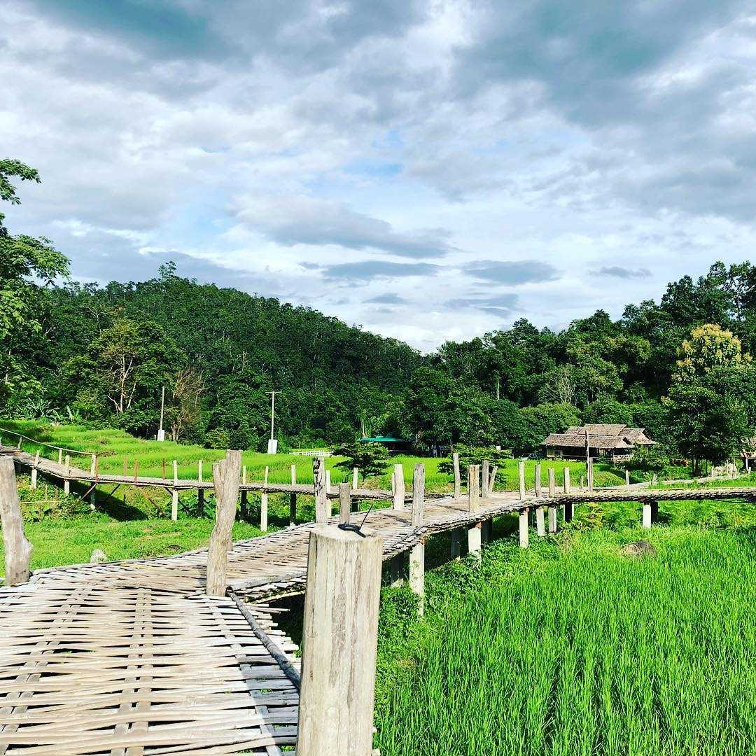 Footbridge over the rice fields of Pai