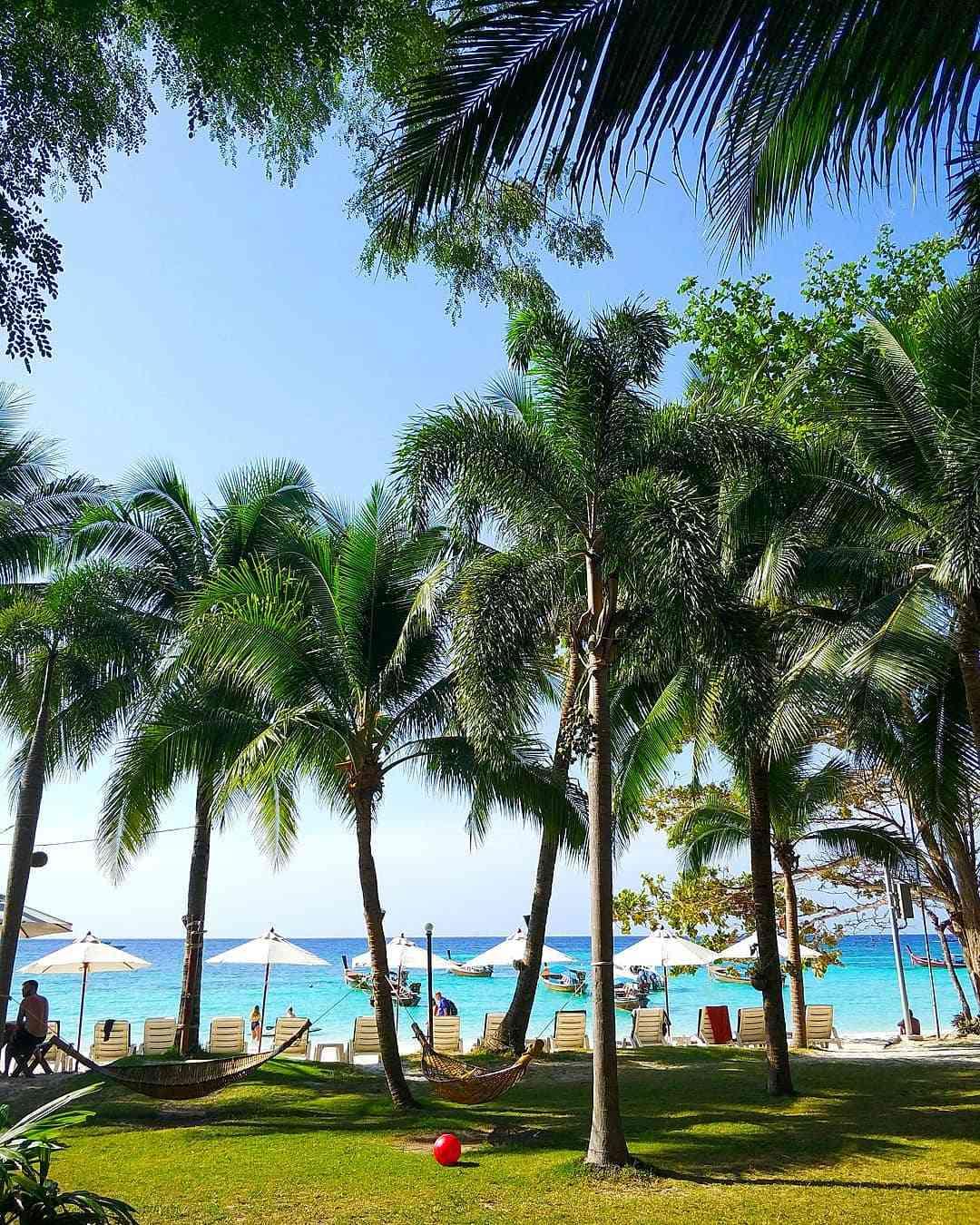 Palmbomen aan het strand op Koh Lipe