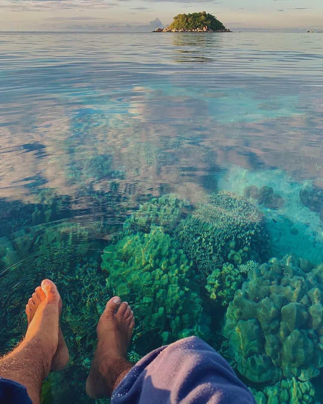 Koraal in het water van koh lipe