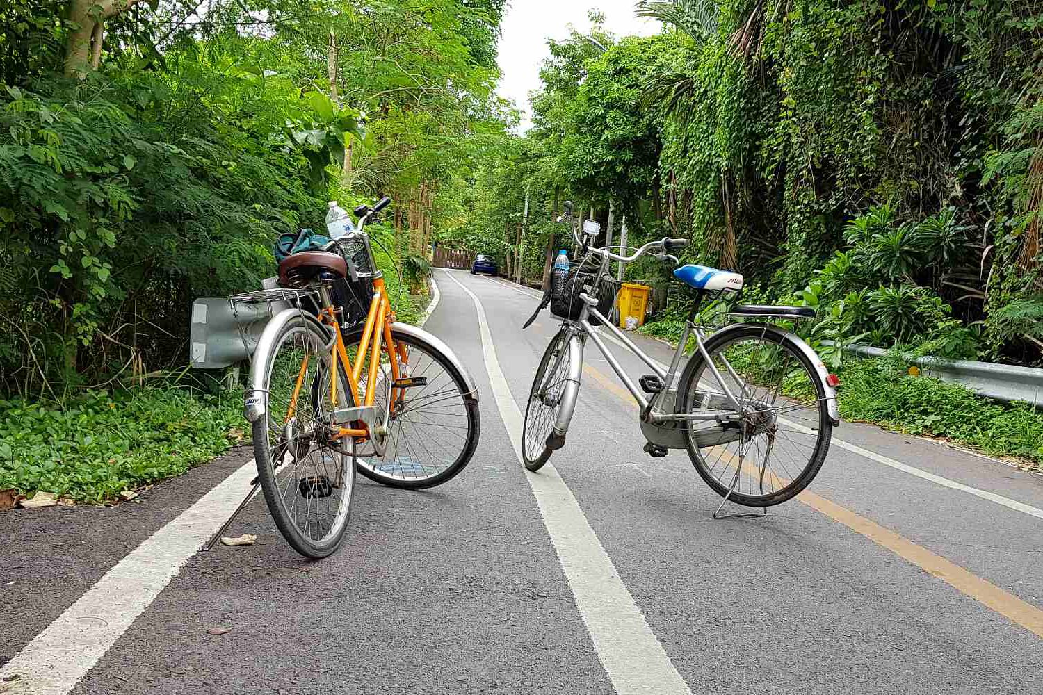 Cycling on the road in Bangkok's Green Lung
