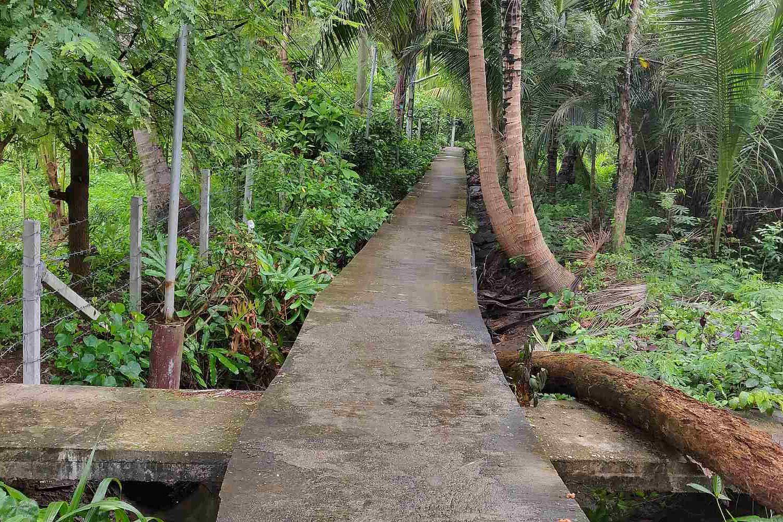 Smalle paden met hoeken tussen het groen
