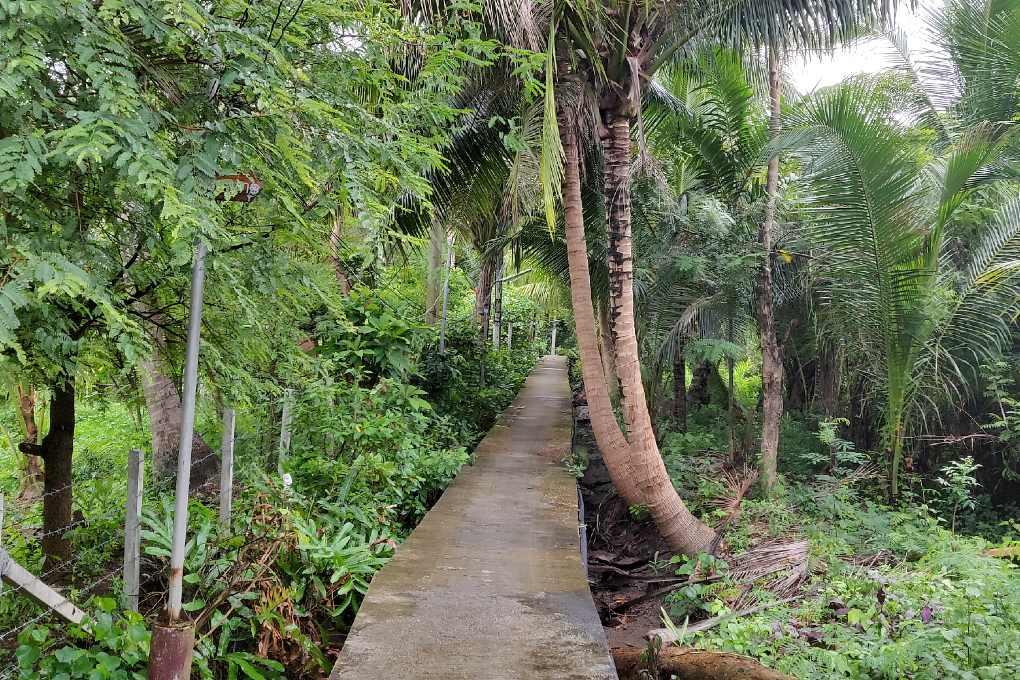 Narrow bike path in the nature of Bangkok's green lung