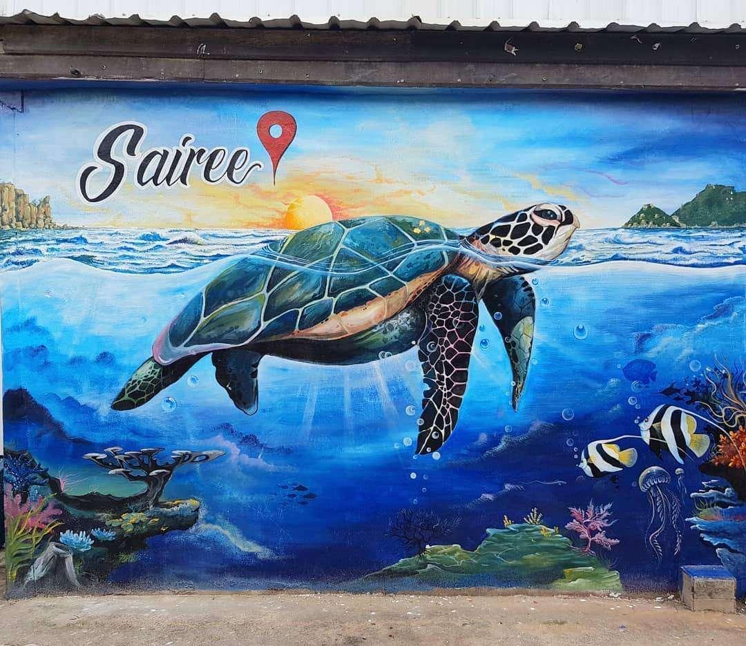 Muurtekening van een schildpad in Sairee, Koh Tao