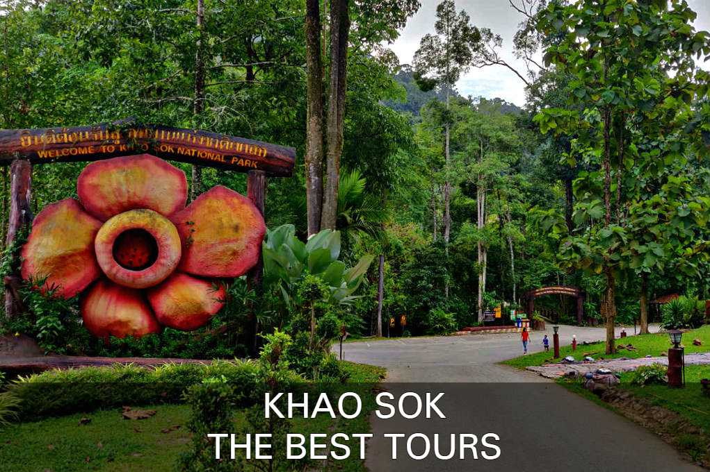 Click here for the best tours in Khao Sok National Park