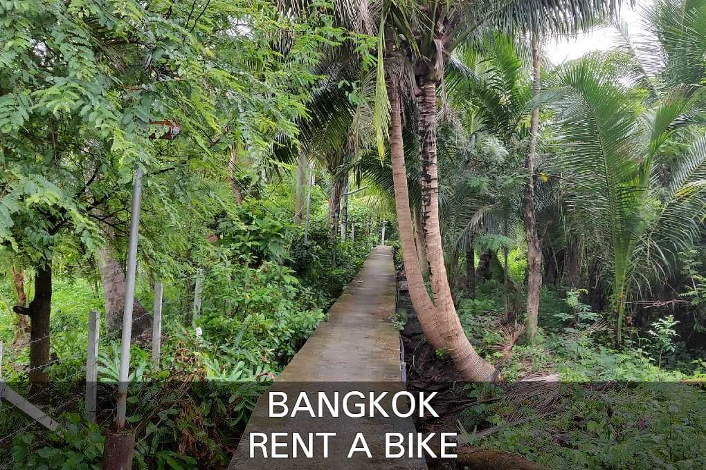 Everything About Renting A Bike In Bangkok