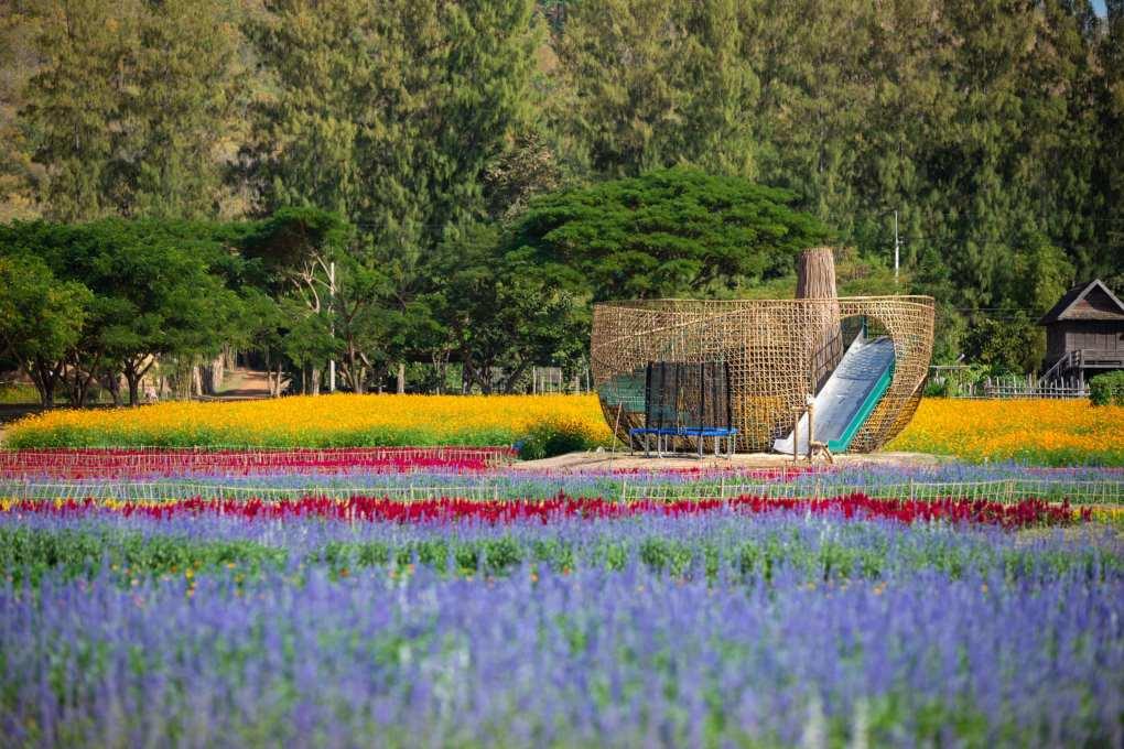 Het Jim Thompson Farm terrein met prachtig gekleurde bloemen