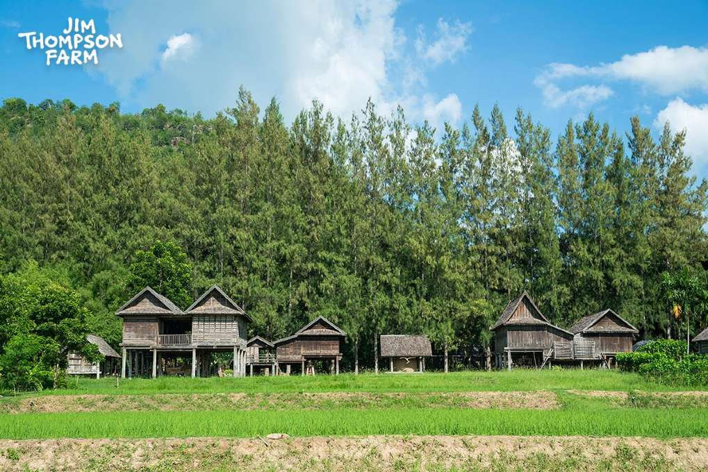 Het Jim Thompson Farm terrein met huizen uit de Isaan