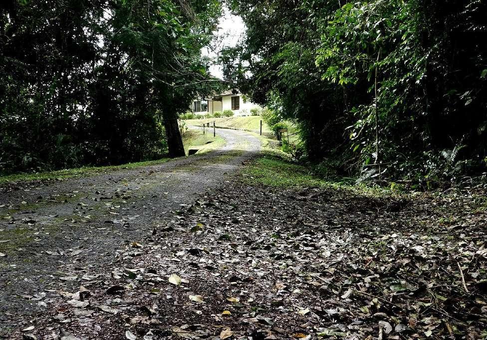 De laatste plek waar Jim Thompson in Maleisie is gezien
