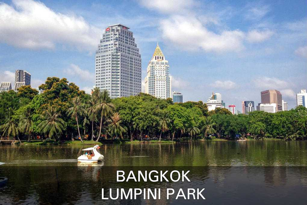 Read About The Lumpini Park In Bangkok