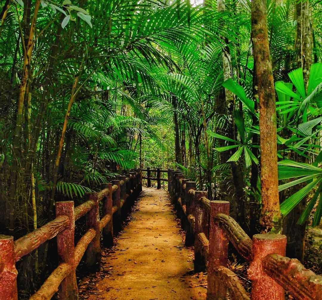 Weg naar de Emerald Pool en Blue Pool in de buurt van Krabi Town