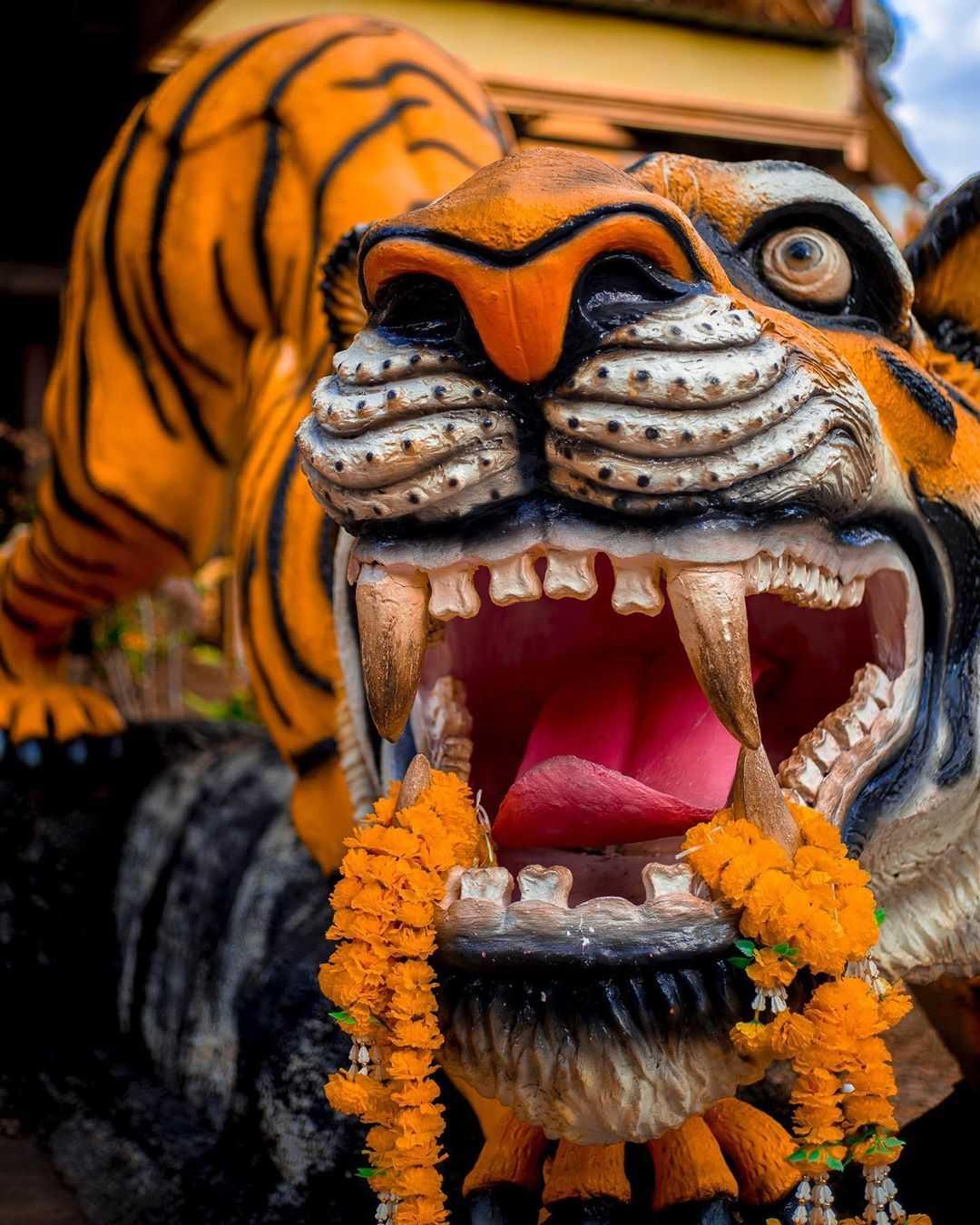 Een tijgerbeeld bij de Tiger Cave Temple vlakbij Krabi Town