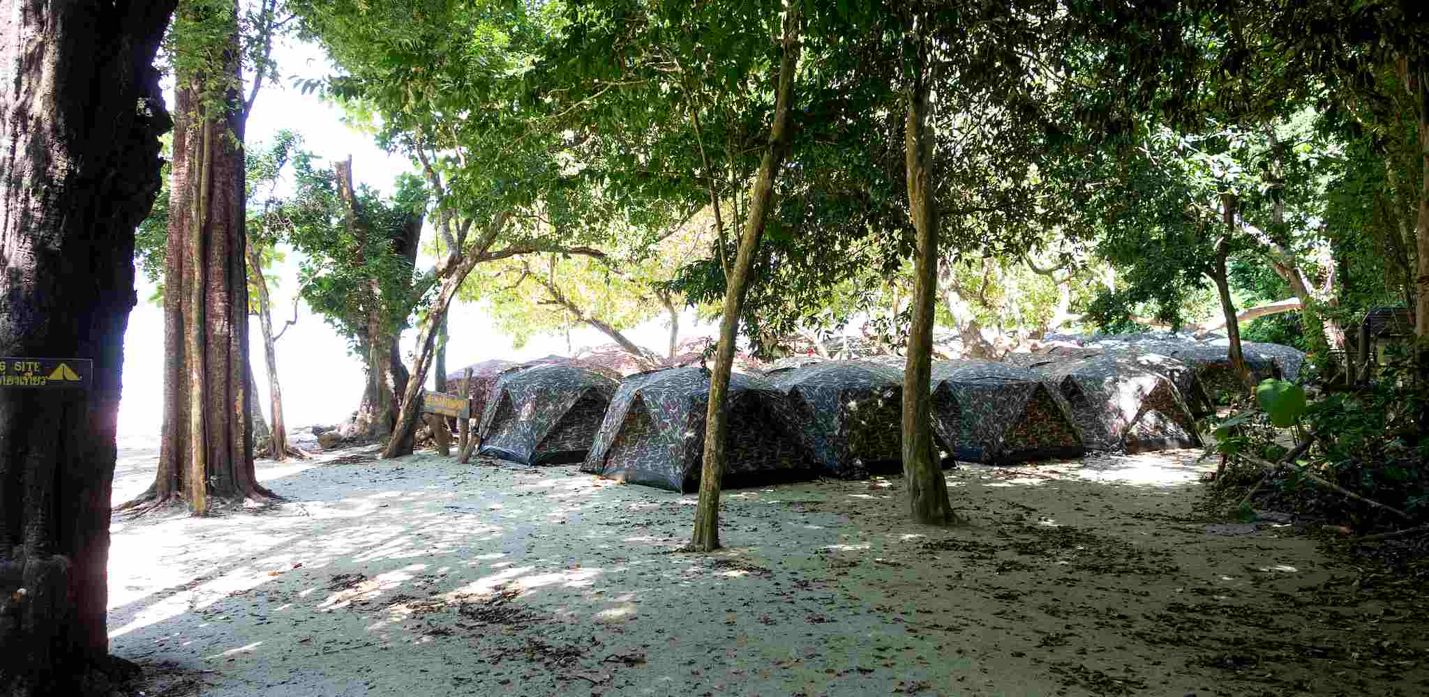 tents on the beach of the Surin Islands under the trees
