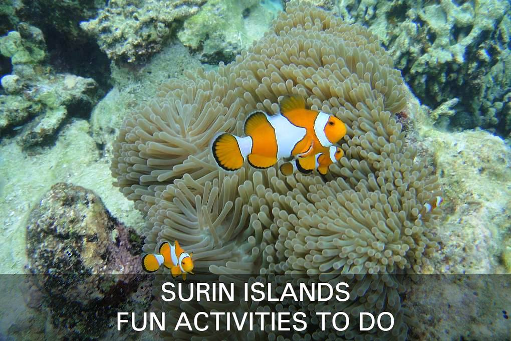 Read All About The Best Activities On The Surin Islands