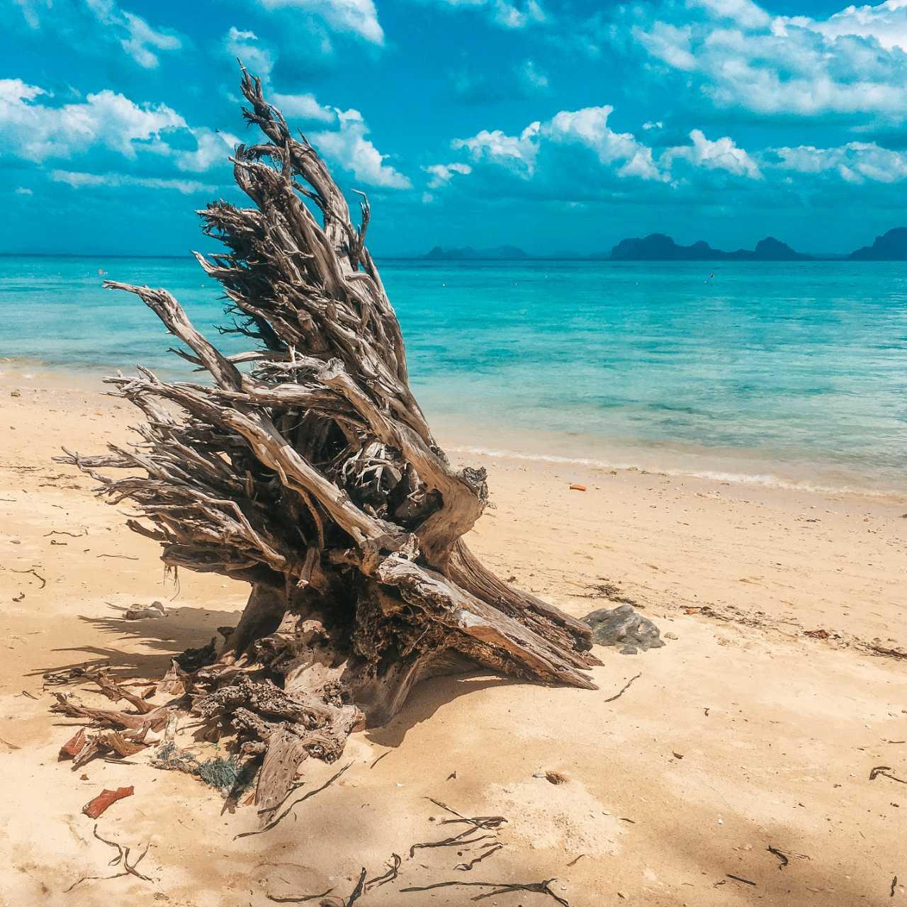 Aangespoeld stuk hout op Koh Ngai