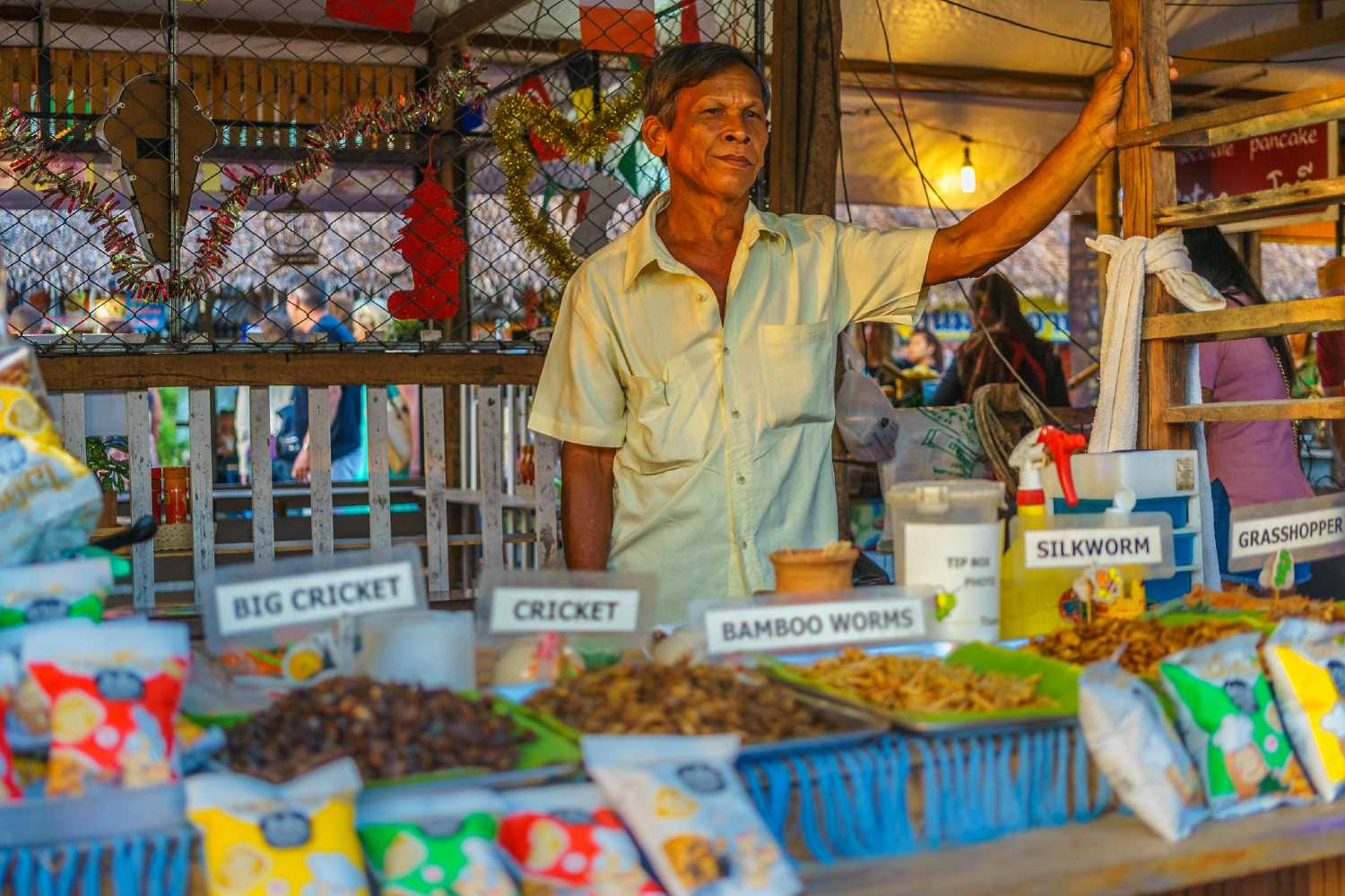 Bang Niang Market, seller of fried insects behind his market stall