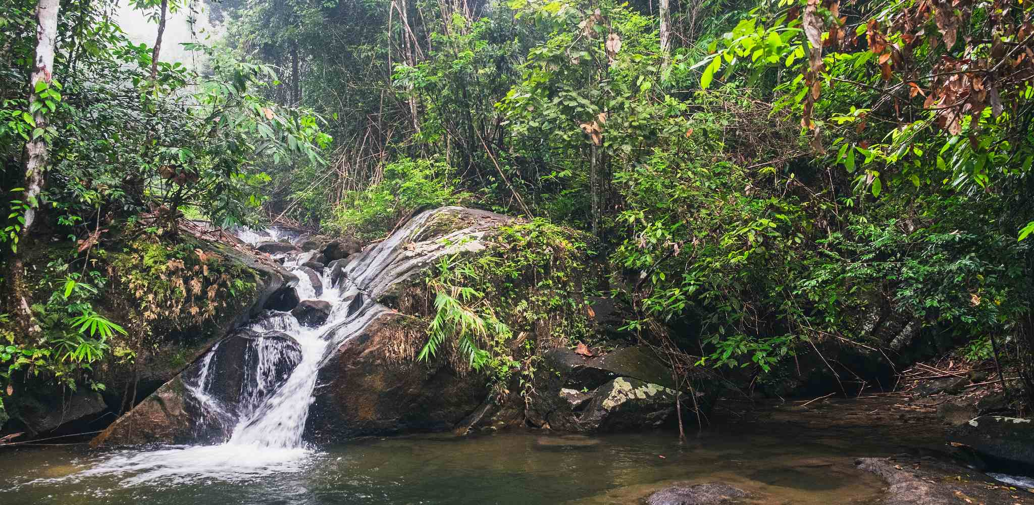 Chong Fa waterfall omgeven door jungle in het Lam Ru National Park