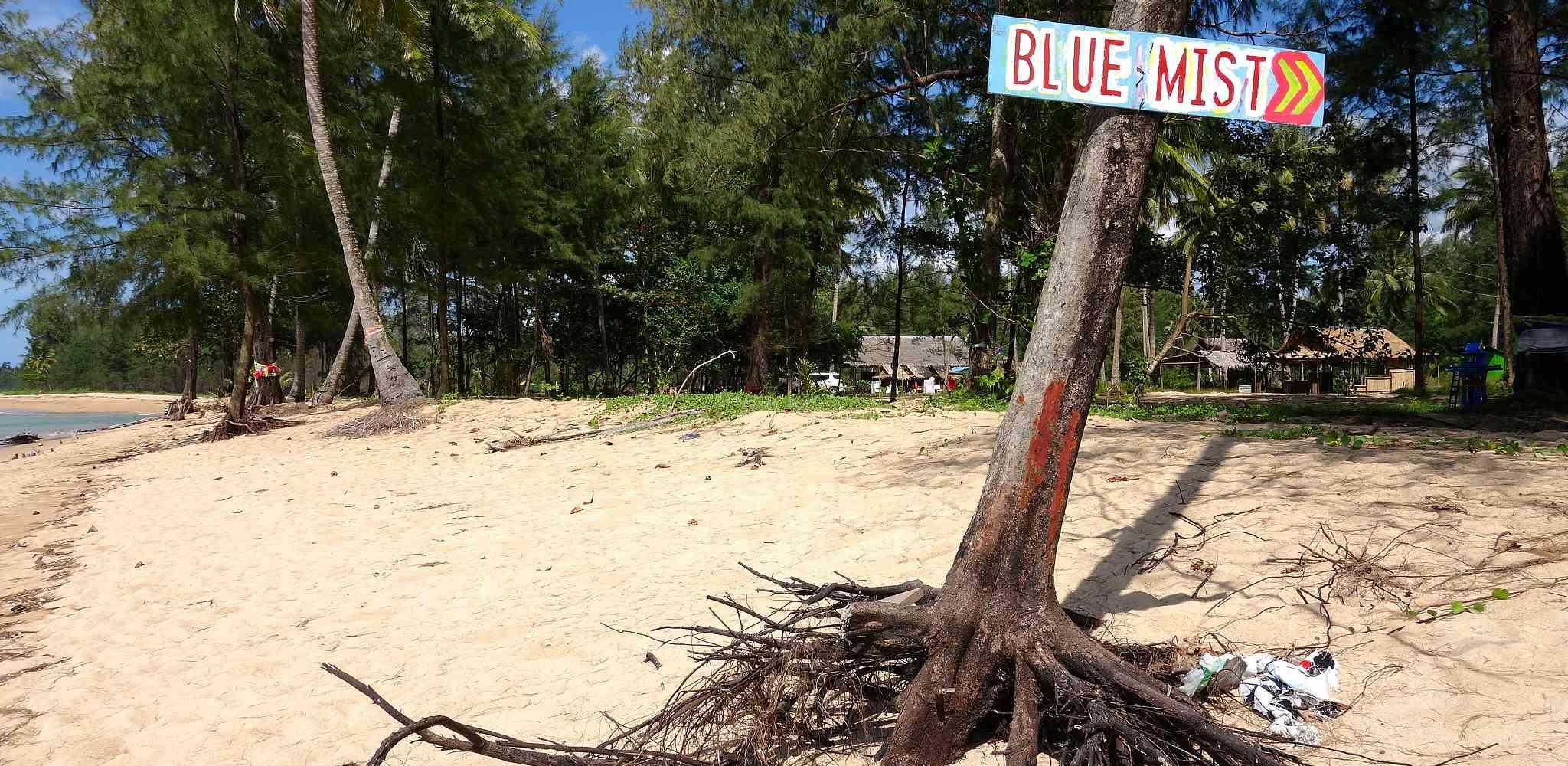 Boom op het witte zand van Coral Beach met bord van restaurant