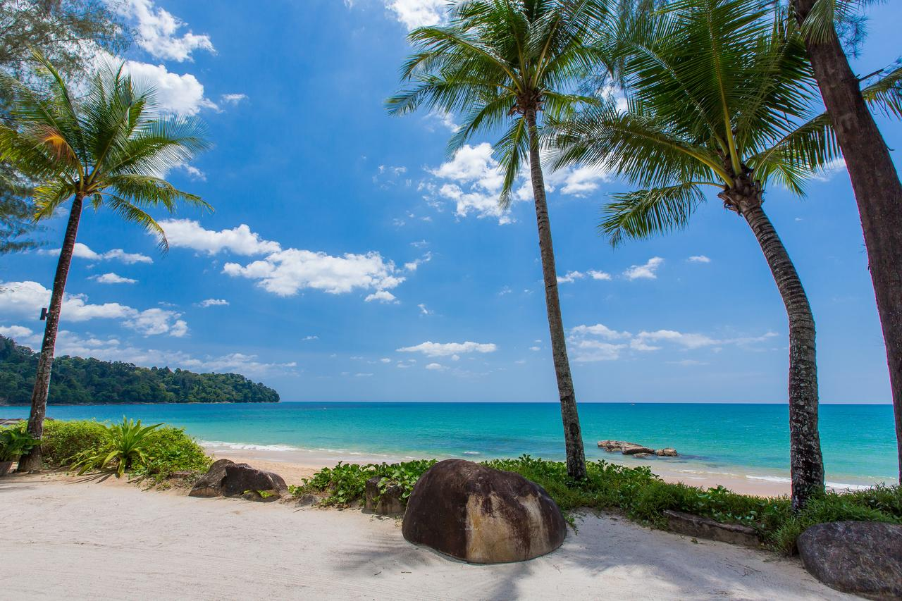 Beach with palm trees, rock and blue sea