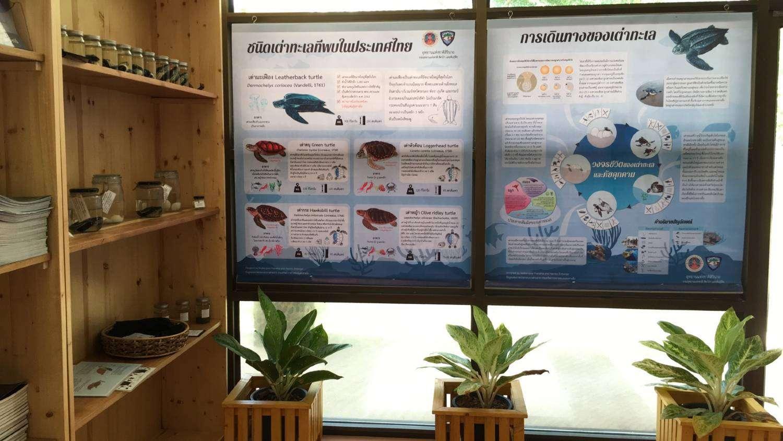 Information in the Sirinat National Park Headquarters on Phuket