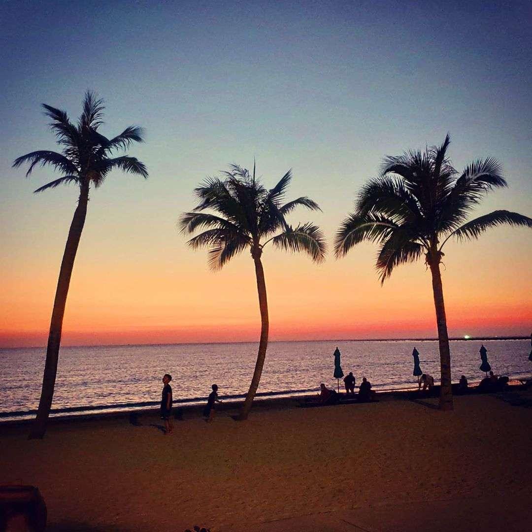 Palm trees on Bang Sak Beach at sunset