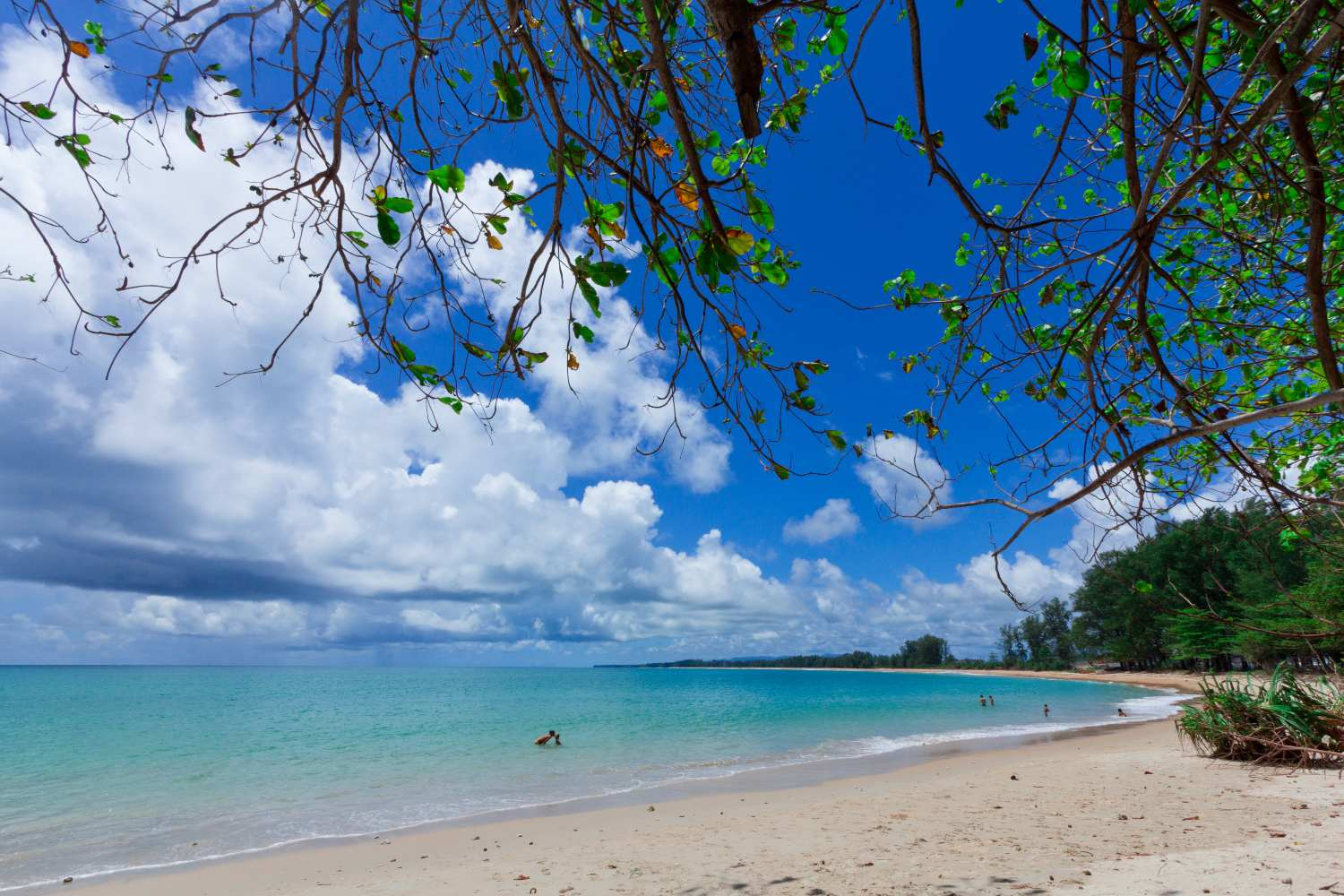 There is good snorkelling in the sea opposite Nai Yang Beach in Phuket's Sirinat National Park.