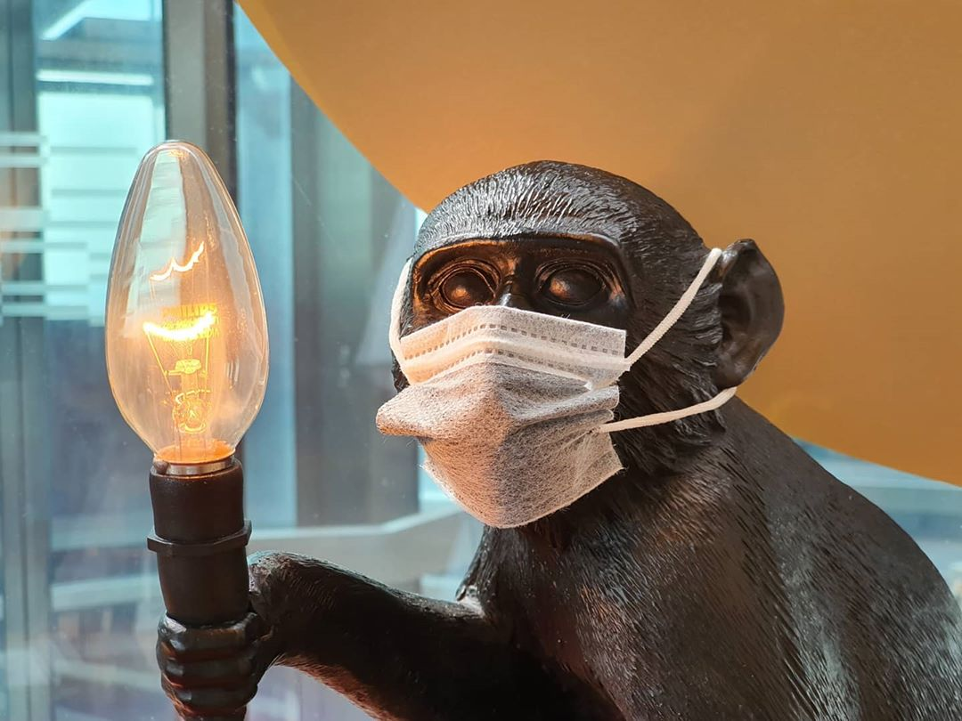 A monkey shaped lamp with a mouth cap on, welcome to 2020