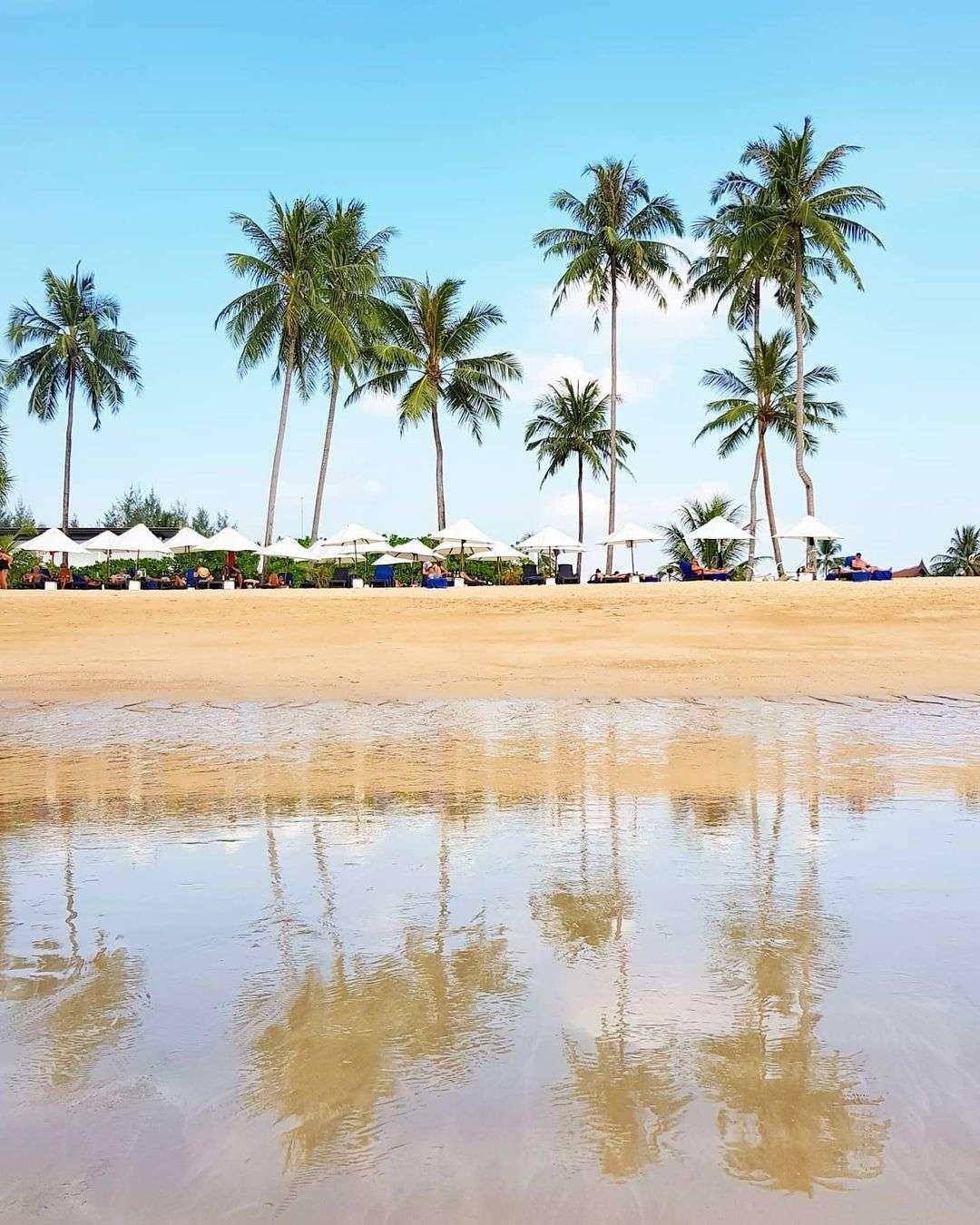Palm trees on Khuk Khak Beach in Khao Lak