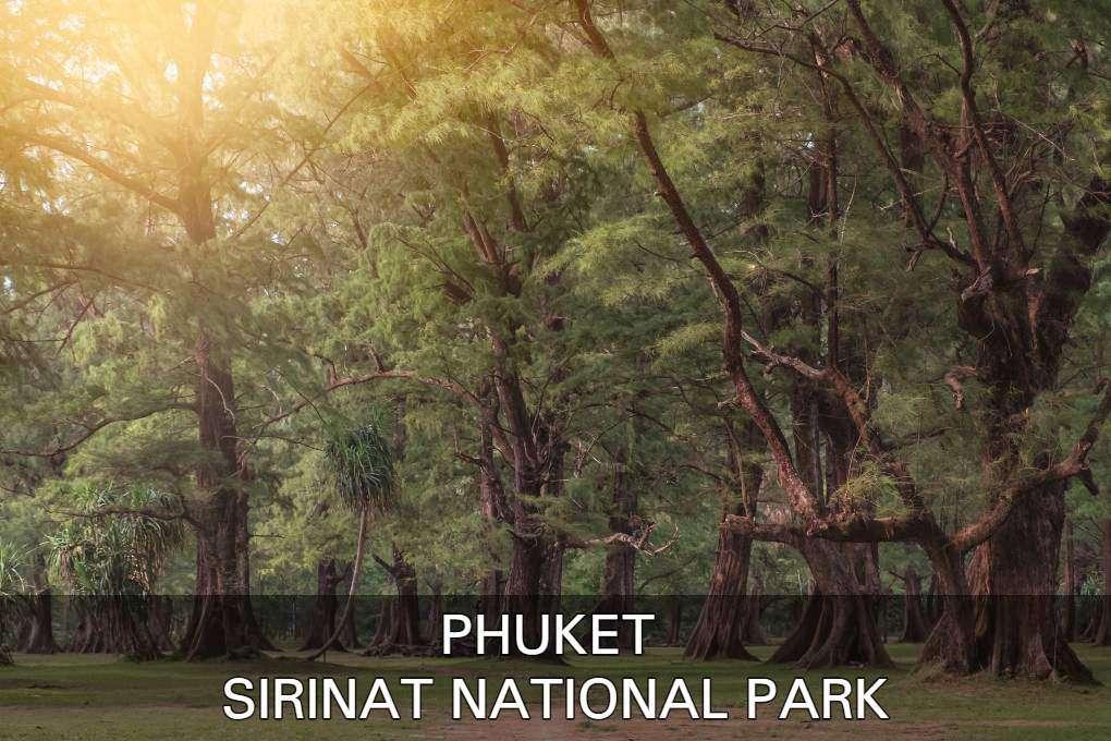 Klik hier om meer te weten te komen over het Sirinat National Park op Phuket