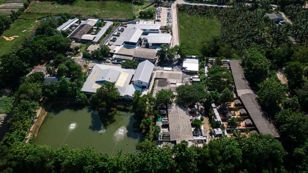 Het gebouw van Soi Dog Foundation in Phuket gezien met een Drone