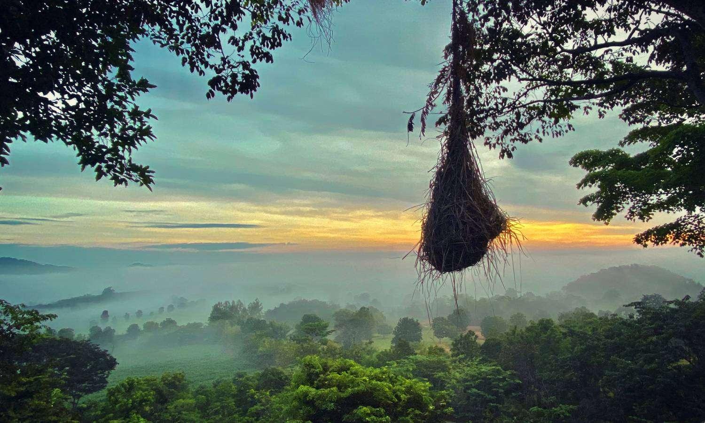 The Khao Yai Valley in Thailand