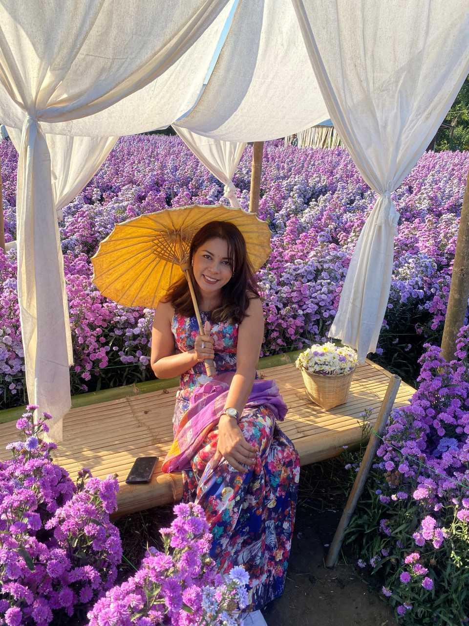 Knappe Thaise vrouw in een bloemenveld van Mae Rim in heet noorden van Thailand