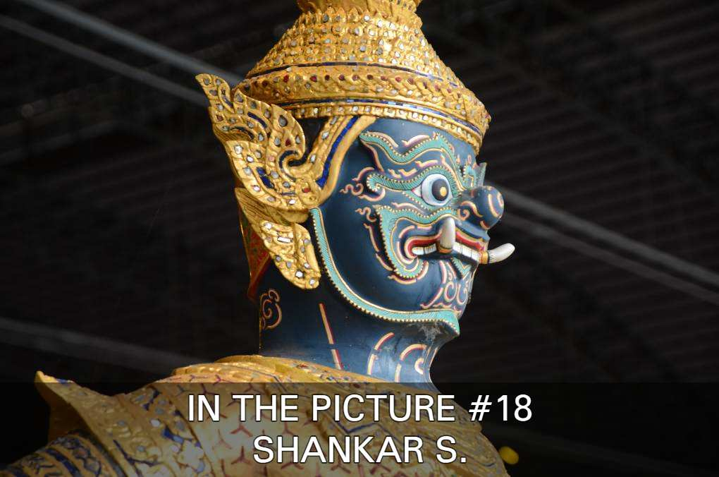 View Photos Of Shankar S. In In The Picture #18