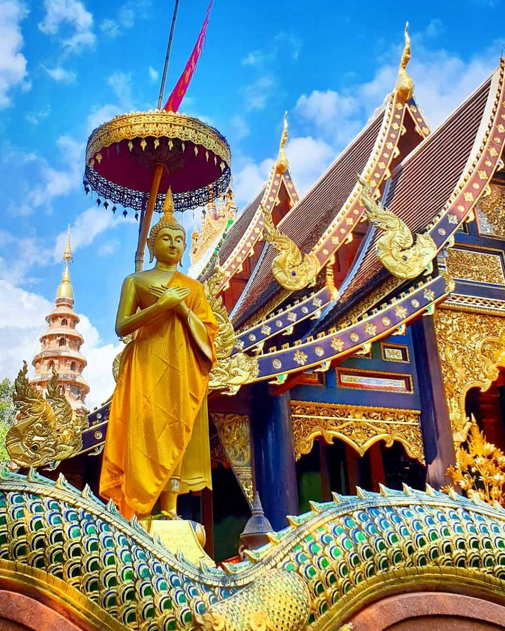 Het terrein van de Wat Ram Poeng in Chiang Mai, Thailand