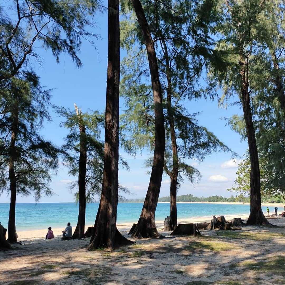 Uitzicht op Nai Yang Beach vanuit het bos van Sirinat National Park op Phuket