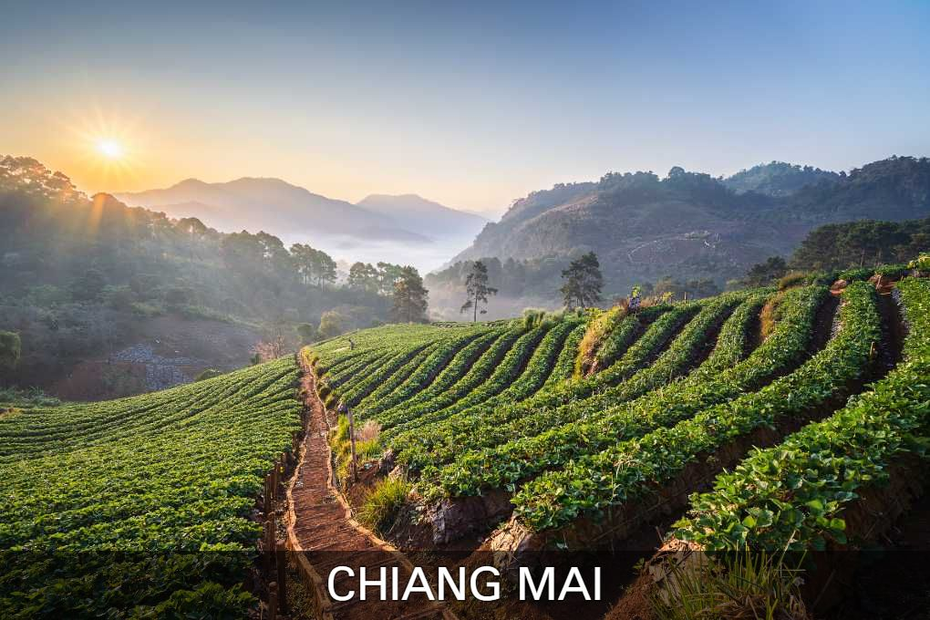 Continue Reading Here For All The Information On Chiang Mai, City In The North Of Thailand.