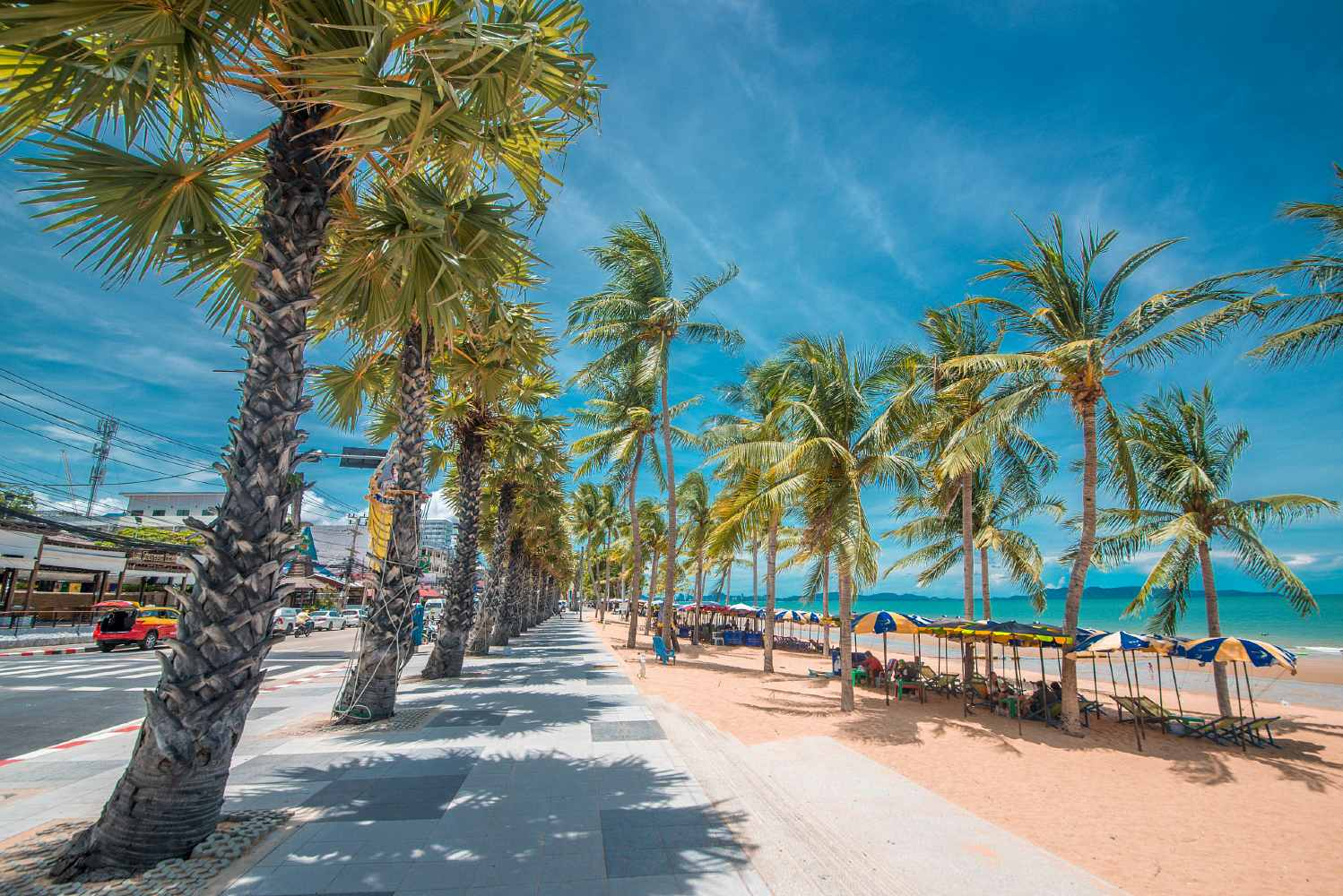 Beach on promenade with palm trees in Pattaya