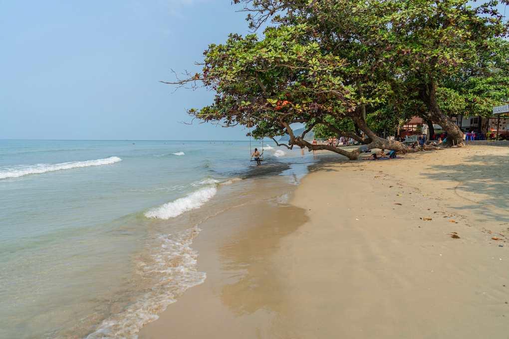 White Sand Beach met boom en schommel
