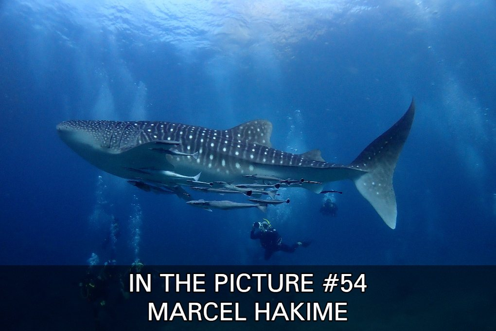 Check Out Some Super Nice Photos By Marcel Hakime In Our In The Picture #54.